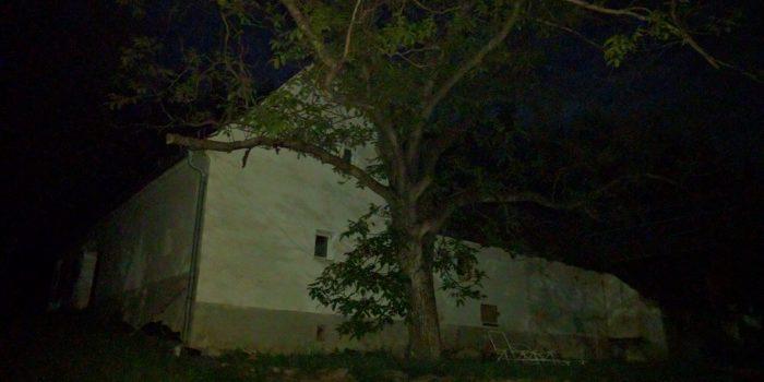 In der Nacht DIE-PHARM