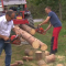 Holzfällen das essperiment 2.0